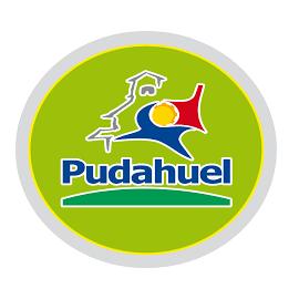 PUDAHUEL